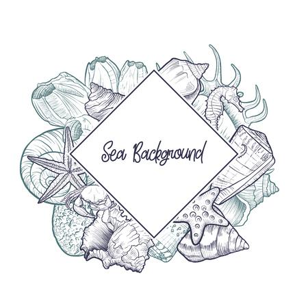 vector background with seashells Vektoros illusztráció