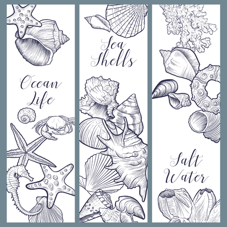 vector banners with seashells , hand drawn illustration, sea templates for flyers, invitation or gift card Illusztráció