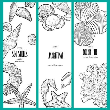vector banners with seashells