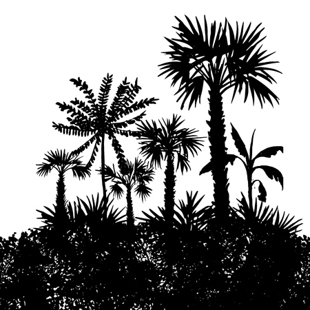 Vector landscape with palm trees and grass, black silhouette, abstract nature background, forest template, hand has drawn illustration