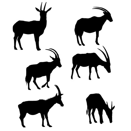 Set of antelopes silhouettes, hand drawn animals isolated at white color illustration. Illustration