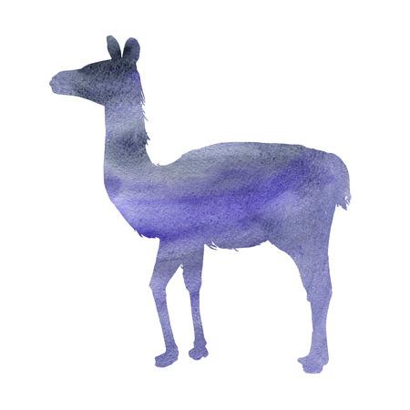ラマの水彩シルエット、白い背景に隔離された動物の手描きスケッチ 写真素材