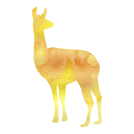 watercolor silhouette of lama, hand drawn sketch of animal isolated at white background
