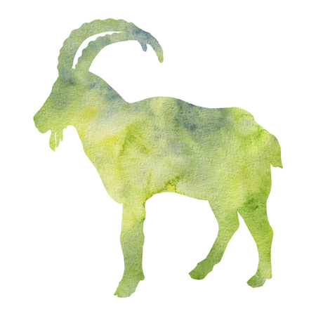 watercolor silhouette of ram, male of sheep, hand drawn sketch of animal isolated at white background