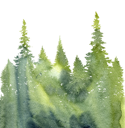 watercolor landscape with fir trees and grass, abstract nature background, coniferous forest template, hand drawn illustration