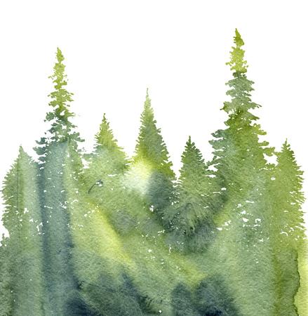 전나무와 잔디, 추상 자연 배경, 구과 맺는 숲 서식 파일, 수채화 풍경 손으로 그린 그림