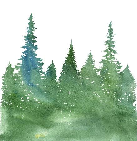 paisaje de acuarela con abetos y hierba, fondo de naturaleza abstracta, plantilla de bosque de coníferas, dibujado a mano ilustración