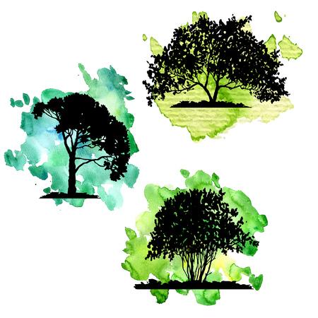 Vector conjunto de árboles de hoja caduca en el fondo verde acuarela, elementos naturales aislados dibujados a mano