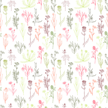 Vector seamless pattern with hand drawn medical herbs Ilustração