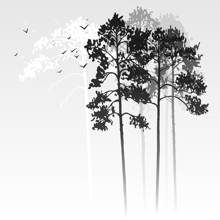 vector landscape with pine trees and birds, abstract nature background, forest template, hand drawn illustration