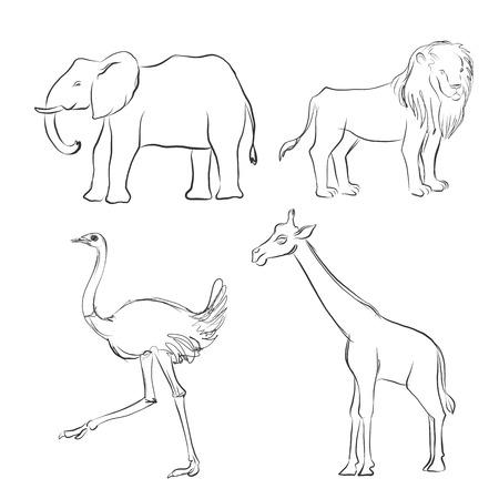 vector cartoon sketch of animals