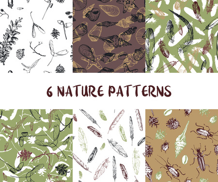Set of seamless nature patterns with shells, pine cones, feathers and beatles, hand drawn vector illustration. Illustration