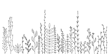 Background with drawing of herbs and flowers