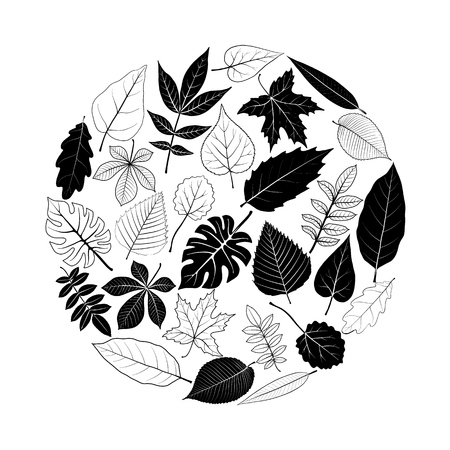 Round template with tree leaves Illustration