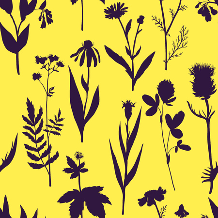 Vector seamless pattern with medical plants