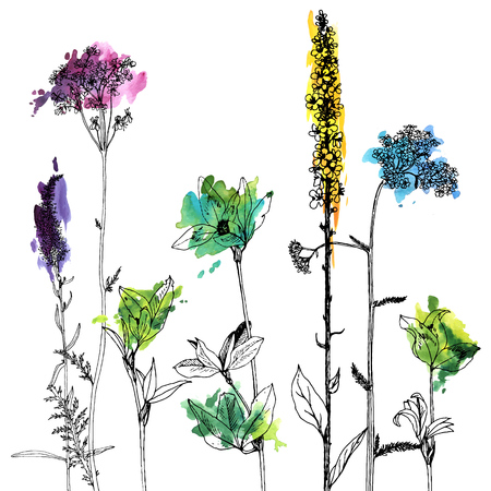 Background with drawing herbs and flowers design