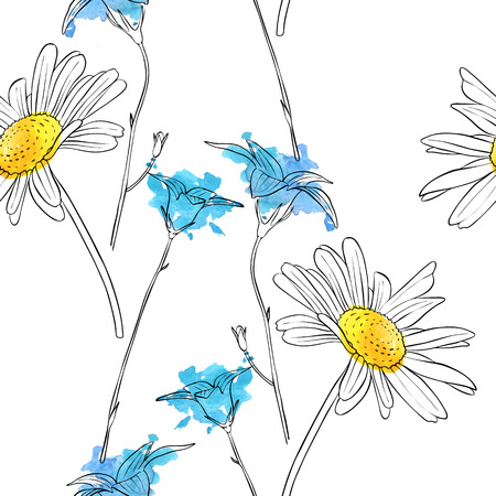 vector drawing flower of daisy Ilustracja