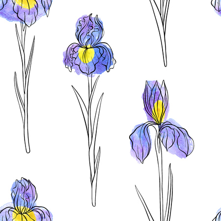 vector seamless pattern with flowers of iris Vettoriali