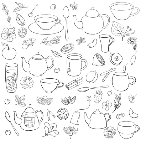 ingredients for herbal, fruit, floral and spice tea isolated at white background, hand drawn illustration