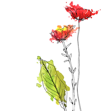 Vector drawing herbs and flowers 일러스트