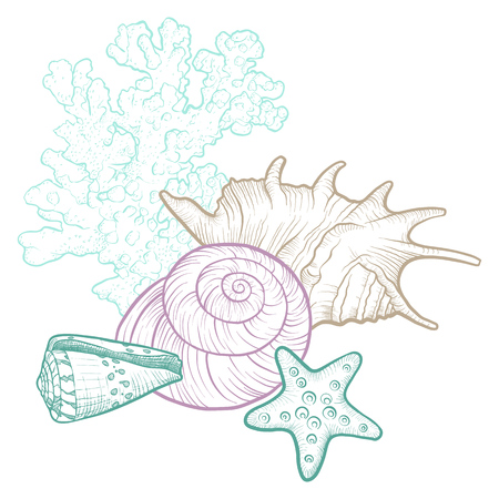 vector background with seashells