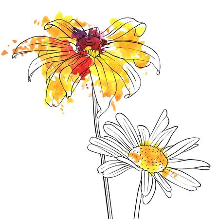 vector tekening bloemen van madeliefje