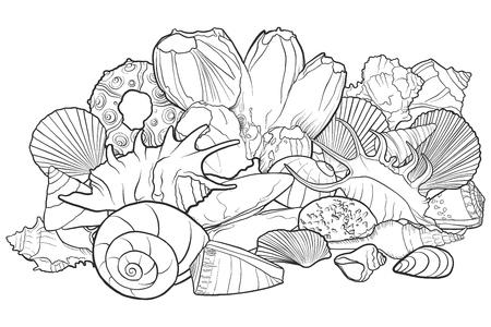 vector background with seashells Standard-Bild - 104264138