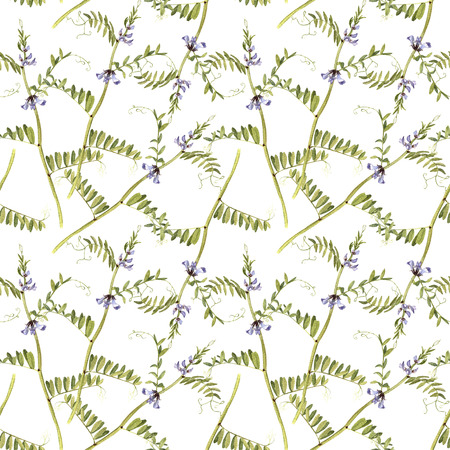 Flower of spring pea patterns