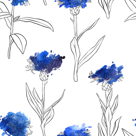 vector seamless pattern with drawing blue cornflowers and watercolor paint stains, floral composition, hand drawn botanical illustration 向量圖像
