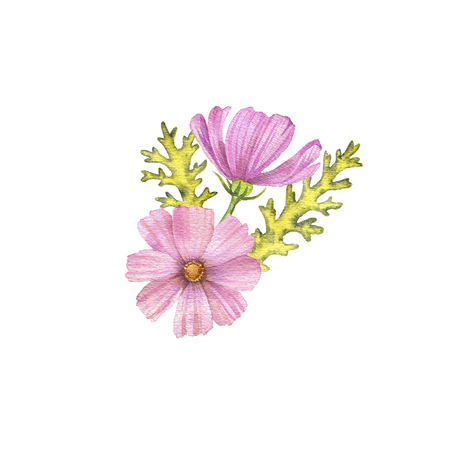 watercolor flower drawing template Stock Photo