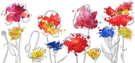 vector drawing wild flowers, poppies, daisies and cornflowers and watercolor paint stains, floral composition, hand drawn illustration