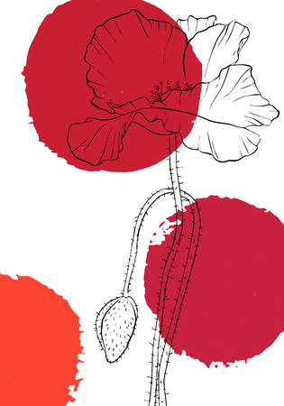 vector drawing poppy flowers with paint stains, floral composition, hand drawn illustration