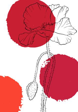 Vektorzeichnung Mohnblumen mit Farbflecken, florale Komposition, handgezeichnete Illustration