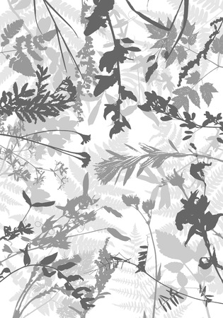 Vector template with leaves and plants silhouettes, floral background