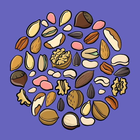 vector set of drawing nuts, hand drawn illustration