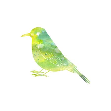 watercolor silhouette of bird