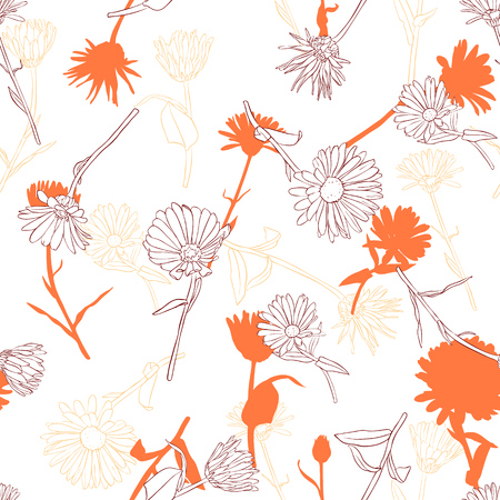 vector drawing seamless pattern with daisy flowers