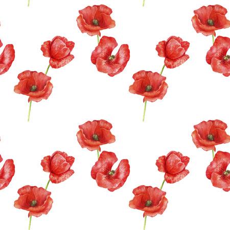 nahtloses Muster mit roten Mohnblumen Standard-Bild