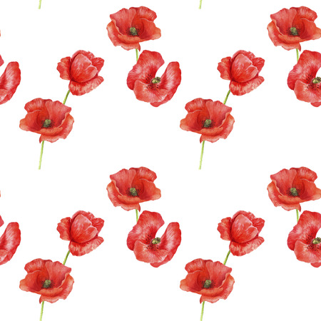 seamless pattern with red poppy flowers Stock Photo