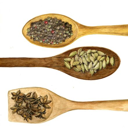 wood spoon with spices Stock Photo