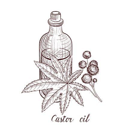vector drawing castor oil