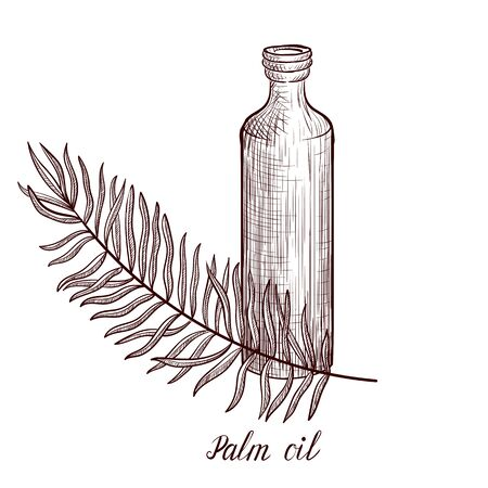 vector drawing palm oil