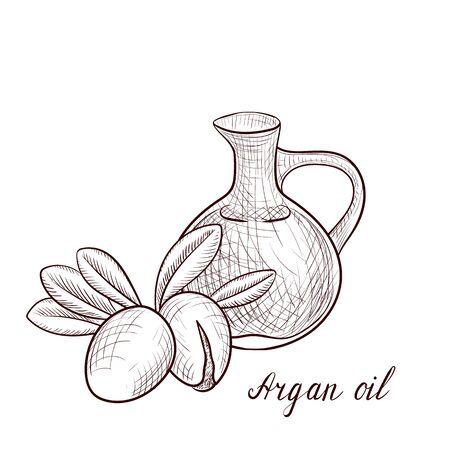 vector drawing argan oil Illustration