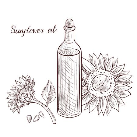 vector drawing sunflower oil