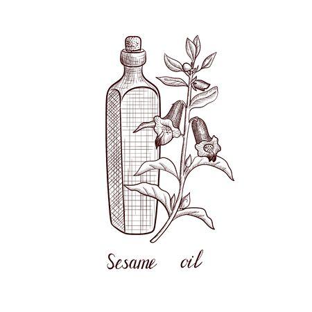 vector drawing sesame oil Çizim