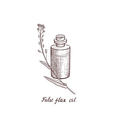vector drawing false flax oil Ilustracja