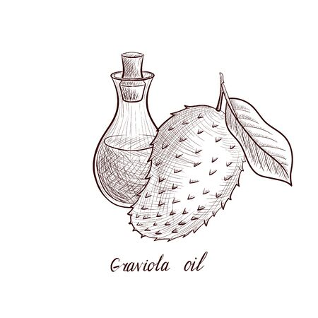 vector drawing graviola oil