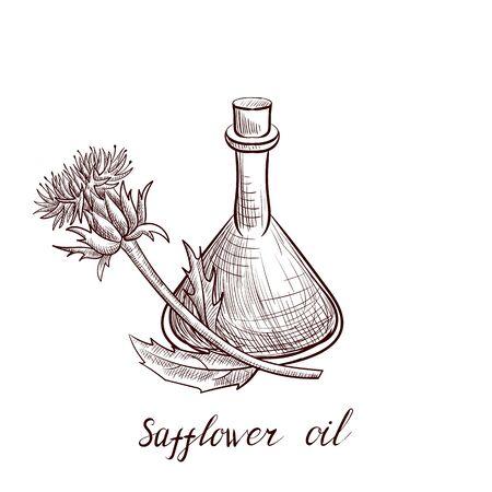 vector drawing safflower oil