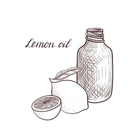 vector drawing lemon oil Çizim