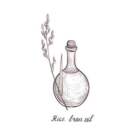 wektor rysunek olej z otrębów ryżowych Ilustracje wektorowe
